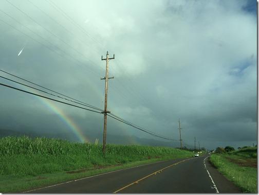 Hawaii 174