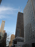 Downtown Chicago 01142012b