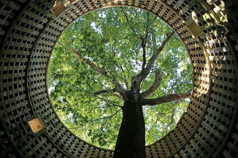oak-dovecote-pouzay-5