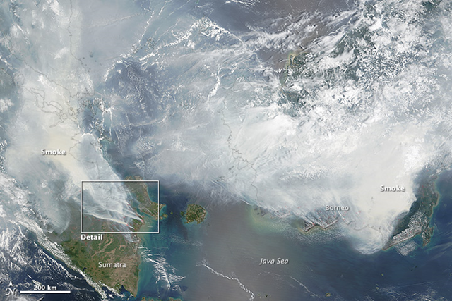 As seen in this 24 September 2015 image from the Moderate Resolution Imaging Spectroradiometer (MODIS) on NASA's Terra satellite, peat fires burn in Indonesia as farmers engage in 'slash and burn agriculture.' Red outlines indicate hot spots where the sensor detected unusually warm surface temperatures associated with fires. Thick gray smoke hovers over both islands and has triggered air quality alerts and health warnings in Indonesia and neighboring countries. Visibility has plummeted. Photo: Adam Voiland and Jeff Schmaltz