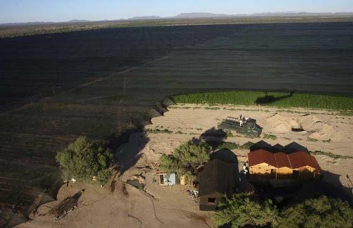 A maior plantação de maconha da história do México