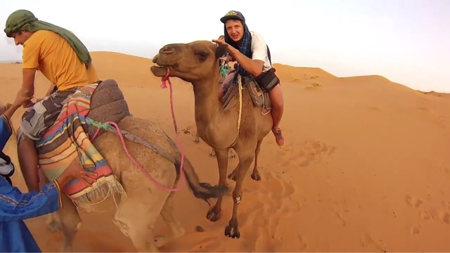 morocco camel trekking in erg chebbi