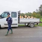 Lopták a fát a vízügyesek, elkapták őket