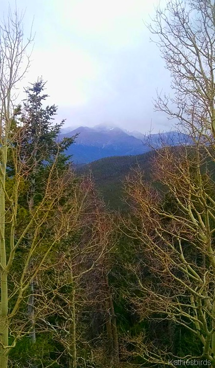 7. 10-20-15 Long's Peak