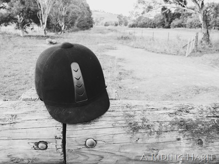 The Random Hat sits - A Riding Habit