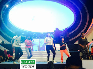 Filmfare South 2015 Images | Tamannaah Dance Performances On Big Stage Of Filmfare