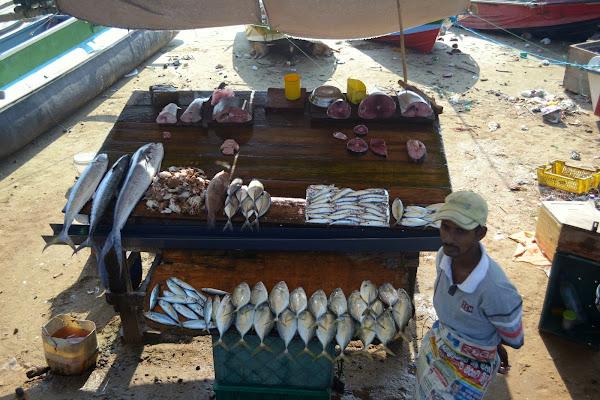 свежая рыба, рыбный рынок