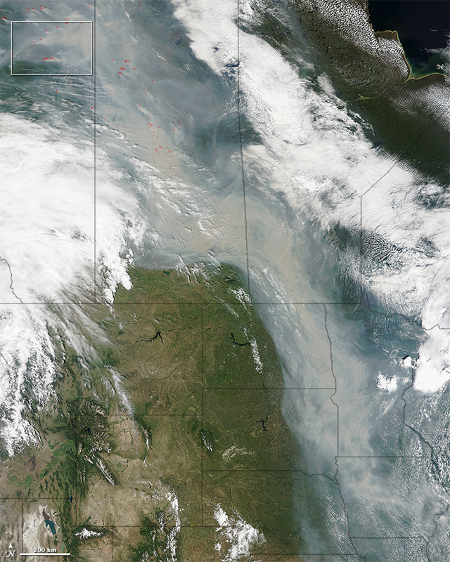 On 29 June 2015, the Moderate Resolution Imaging Spectroradiometer (MODIS) on NASA's Terra satellite captured this image of smoke from hundreds of wildfires in western Canada. Actively burning areas, detected by the thermal bands on MODIS, are outlined in red, while forests appear dark green. Photo: Jeff Schmaltz / LANCE/EOSDIS MODIS Rapid Response Team