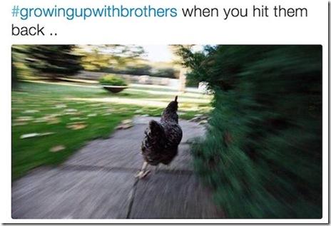 siblings-problems-023