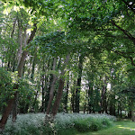 Arboretum de la Vallée-aux-Loups : coin pique-nique