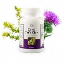 Coral Cat's Claw / Корал Кошачий коготь