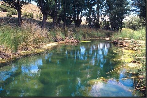 Río Aguasvivas