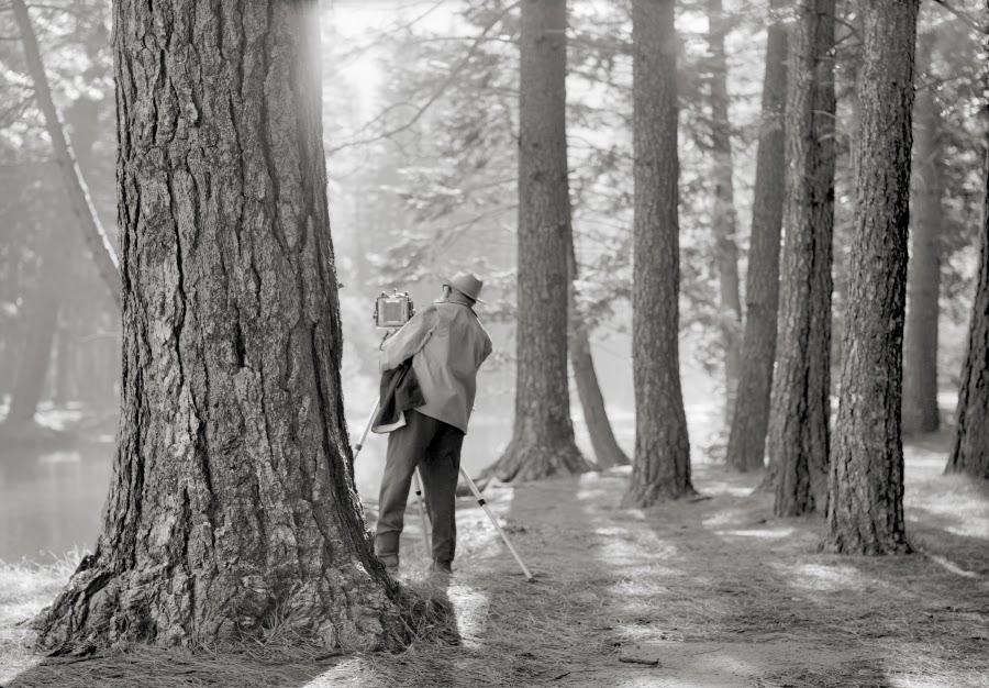 더스트림_ORLAND, Ansel Adams Photographing in Yosemite, 1973.tif