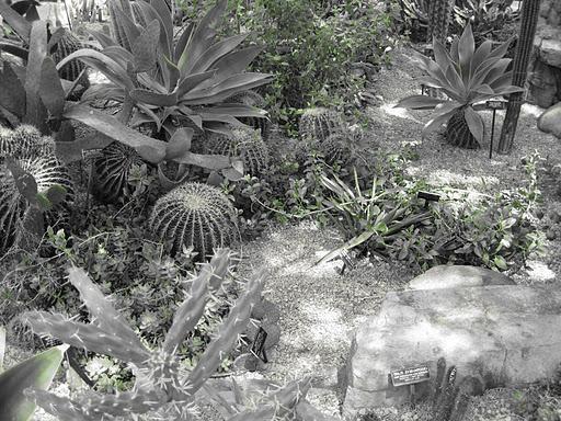 Botanical Gardens Historic