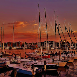 Boats At The Annapolis Yacht Club 2017 by Matthew Beziat - Transportation Boats ( annapolis, boats, anne arundel county, maryland, annapolis yacht club, spa creek, maritime, nautical )