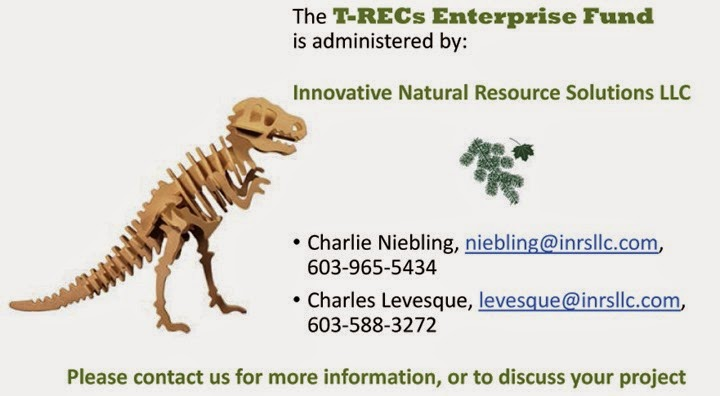 T-REC Enterprise Fund - intro presentation-8-13