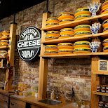 amsterdam cheese company in Amsterdam, Noord Holland, Netherlands