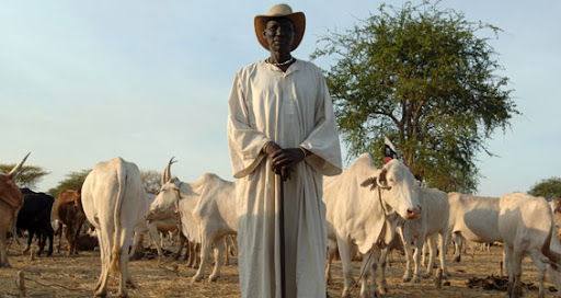 """Both the African Dinka and Arab Misseriya tribes say Abyei belongs to them [EPA]  Source:  Aljazeera <a href=""""http://english.aljazeera.net/news/africa/2010/08/201082173514768670.html"""">Q&A: Sudan's Abyei dispute</a>  <a href=""""http://english.aljazeera.net/focus/2009/07/200972281422955586.html"""">Abyei tribes fear losing land</a> Posted to http://sudanwatch.blogspot.com 23 August 2010"""