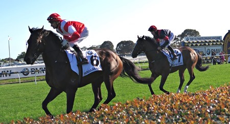 caulfield cup_mongolian khan_trip to paris 1