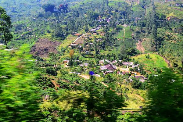 Вид на чайные плантации и деревни, Шри Ланка