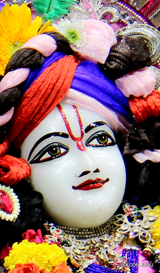 ISKCON Juhu Sringar Deity Darshan 20 Jan 16 (27)