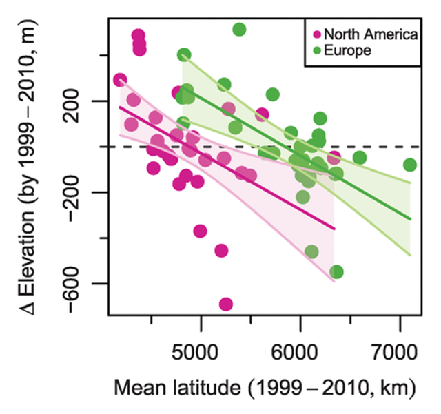 Change in elevation of 67 bumblebee species by 1999 to 2010 relative to their mean latitude. Elevations are calculated using mean elevations across species observations. The slopes are similar between continents (according to regression and PGLS analyses). The confidence bands (95 percent) of regression slopes are shown. Graphic: Kerr, et al., 2015