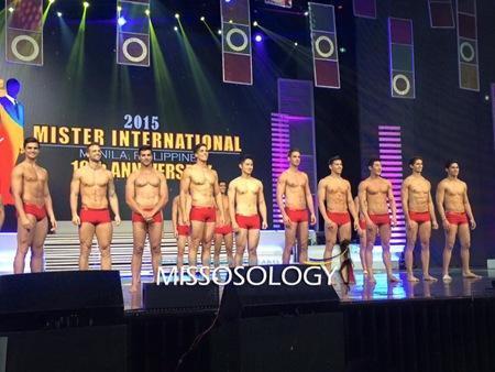 Mister International 2015 Top 10