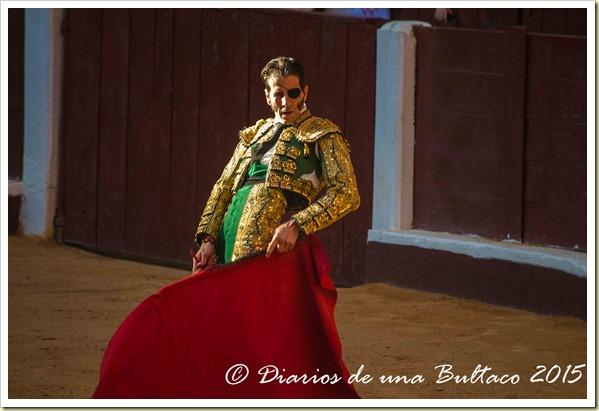 Toros Feria 2015-9986