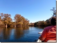 Cruising the Santa Fe River