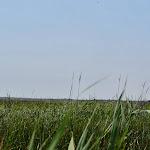 Bodie Island Lighthouse - 06042013 - 09