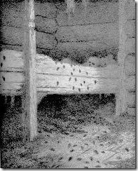 Theodor_Kittelsen_-_Musstad,_1896