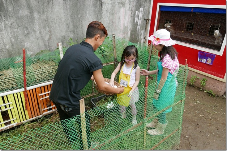 Jensen Kinder Farm Organic Farming for Kids and Adults Quezon City - jotan23 (8)