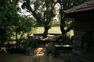 Eflatun-bahçe 094