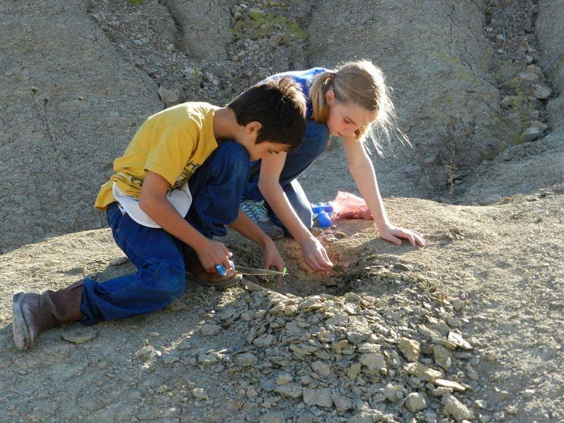 fossils-quarry-4