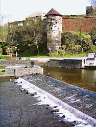 První kamenný hrad zde vystavěl rod Vohburgů počátkem 12. století na místě předchozího slovanského hradiště, kterýnechává německý král a římský císař Friedrich I. Barbarossa v témže století přestavět na falc.