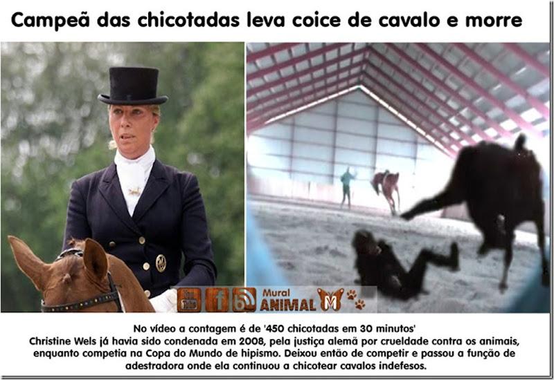 campea_chicotadas