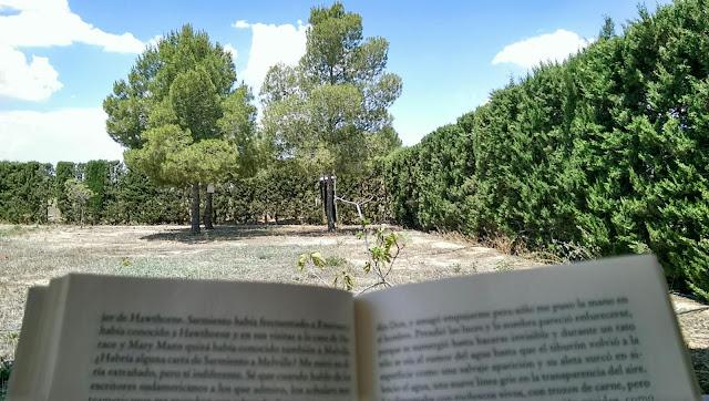 leyendo a Piglia en Yecla