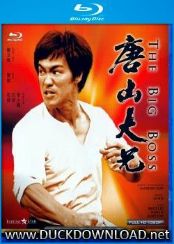 Baixar Filme O Dragão Chinês BD-RMZ 1080p Dual Áudio