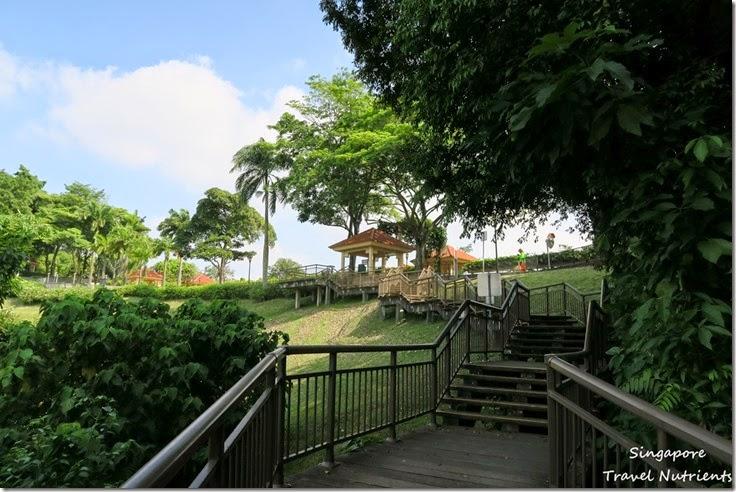 新加坡花柏山 (8)