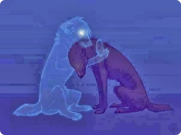 Spirit of a Dog consoling other Dog