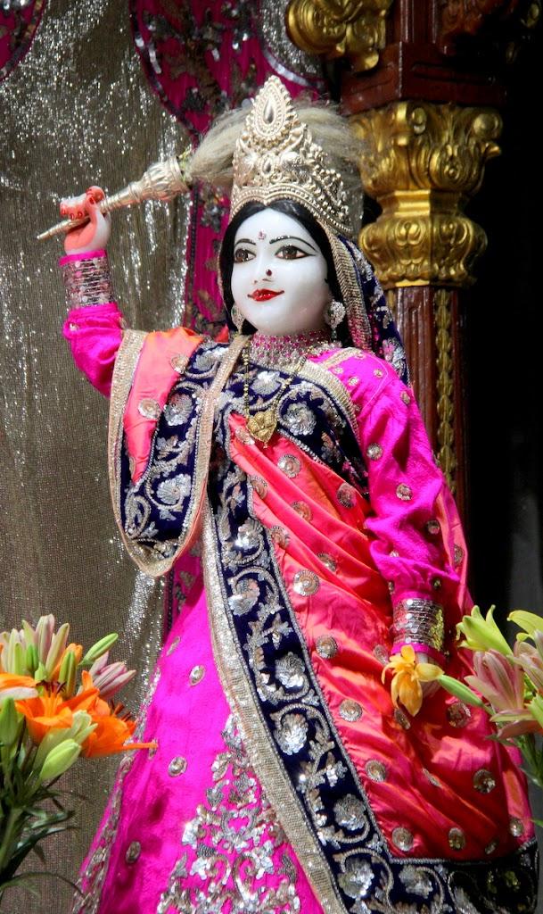 ISKCON Juhu Mangal Deity Darshan 14 Jan 2016 (5)