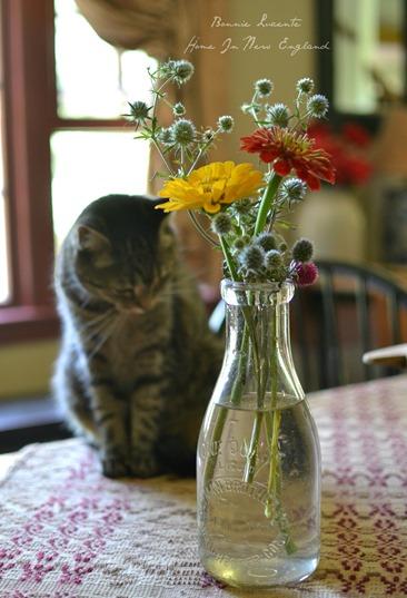 kiki flowers