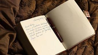diary_446