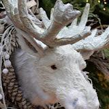 24_Weihnachtsmarkt_02. Dezember 2015.jpg