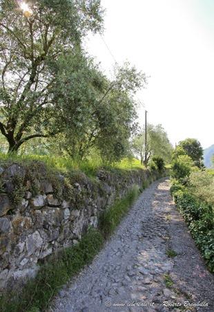 7-San Giorgio-Abbadia Lariana-025 (FILEminimizer)