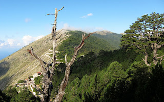 Llogara National Park.