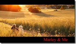 Marley & Me D1