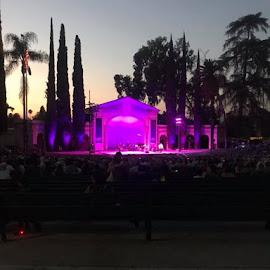 Concert in the park by Linda Kocian - City,  Street & Park  City Parks (  )