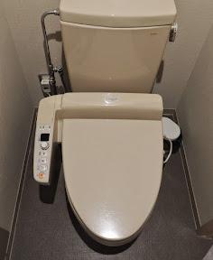 Japanese high-tech toilet