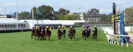 race 6_winning post